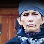 """Observatorio de Defensores de DDHH: """"Anulación del juicio no implica culpabilidad de Defensora Machi Lincoano y comuneros mapuches"""""""